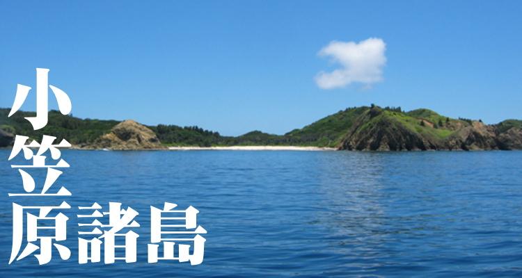小笠原諸島の画像 p1_9
